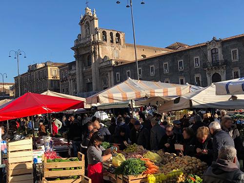 アルジタル シチリアレポート Fiela 市場